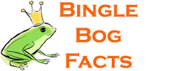 Bingle Bog Facts